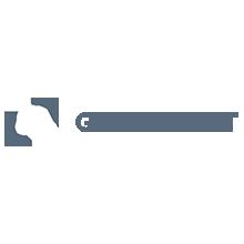 Cliets List Scriptbees